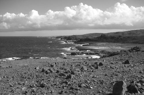 """""""Aruba Seascape II"""""""