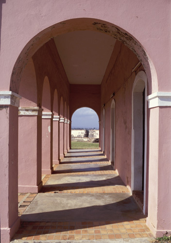 """""""Pink Arches"""""""
