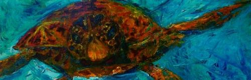 Hawaii Turtle 6