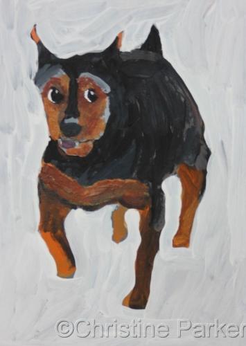Dog 3/20/14