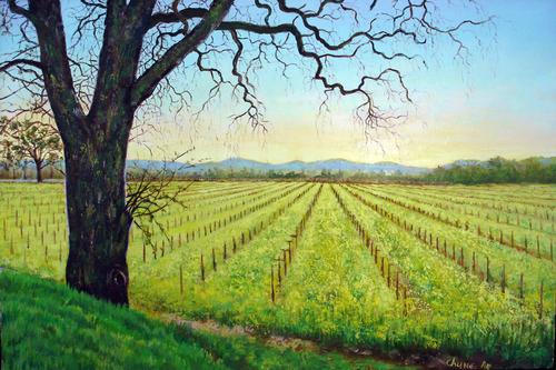 Mustard, Napa Valley #1 by Chung Ae Kim