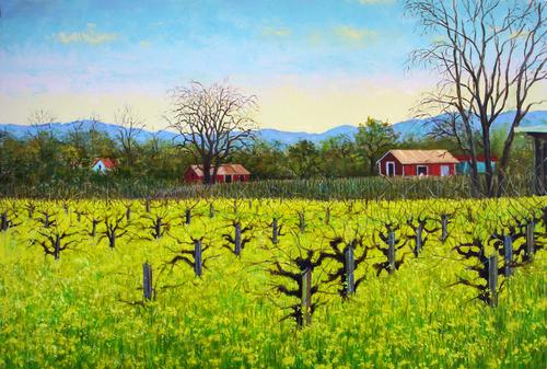 Mustard, Napa Valley #2 (large view)