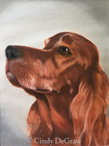 """Red"" Irish Setter Portrait"