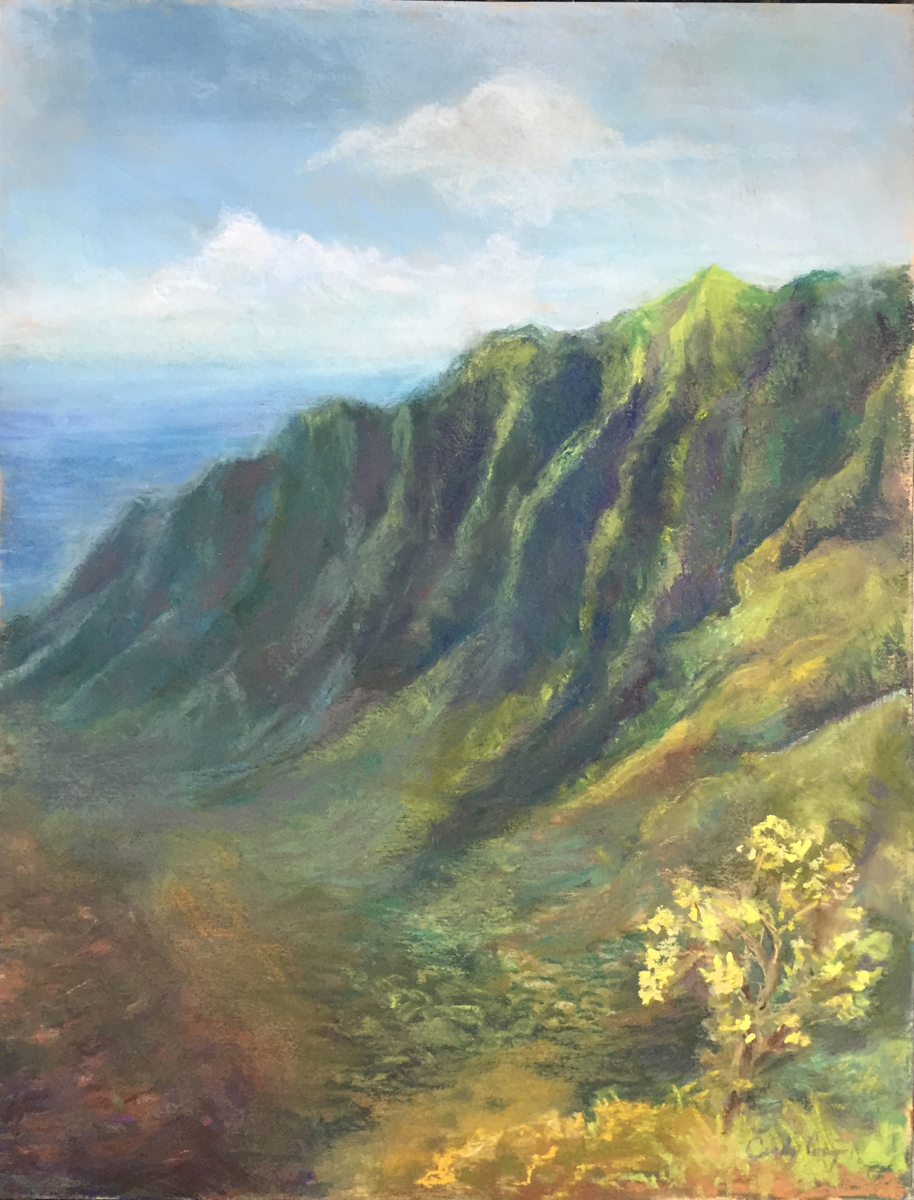 Kalaulau Lookout, Kauai (large view)