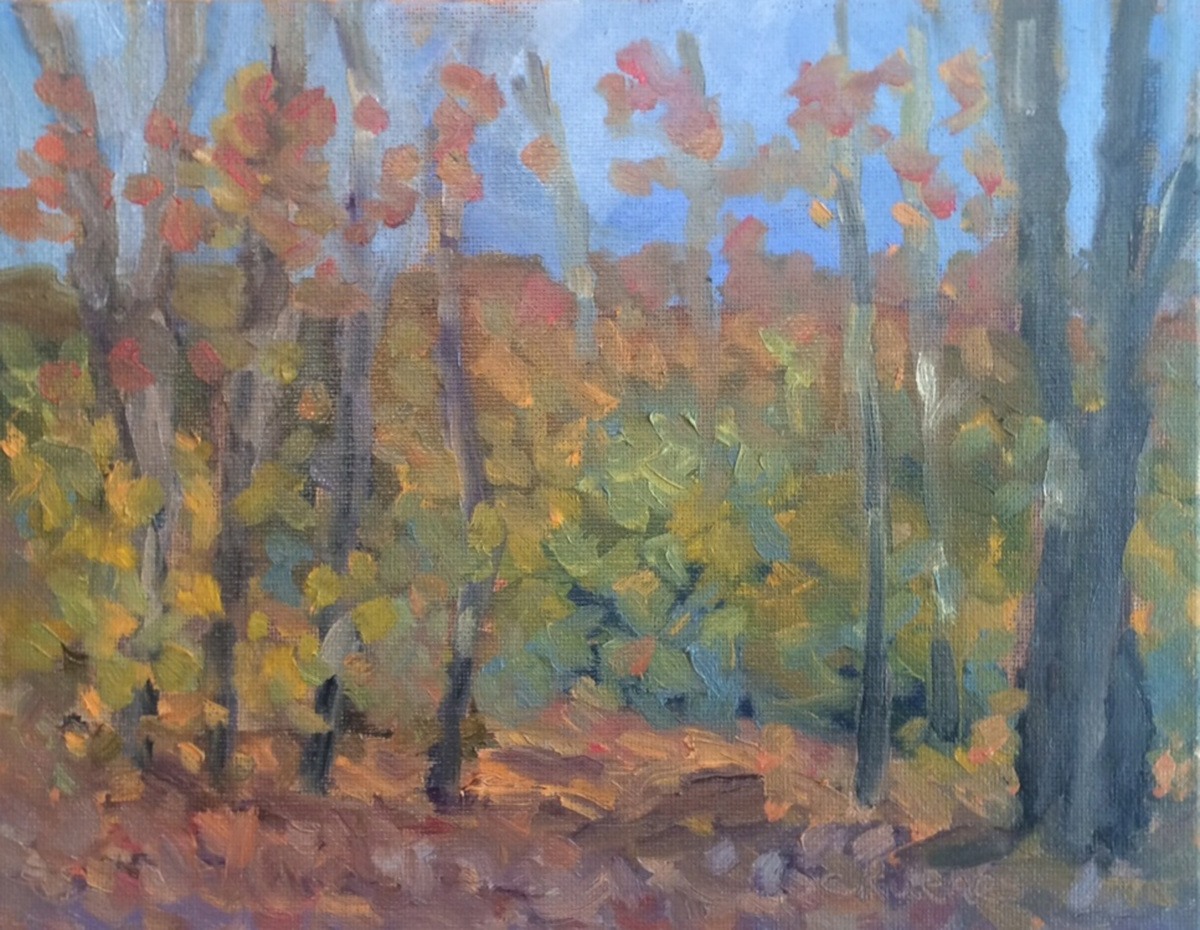 Fall Woods (large view)
