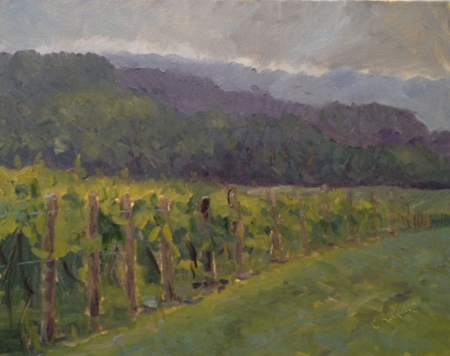 Vineyard on a Muggy Summer Day
