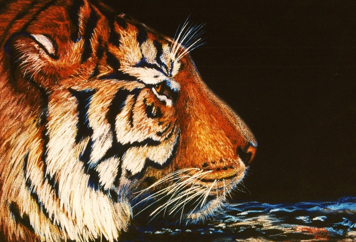 """""""Sumatran Tiger"""" Original painting donated to Hogle Zoo to raise funds for new Tiger Enclosure (large view)"""