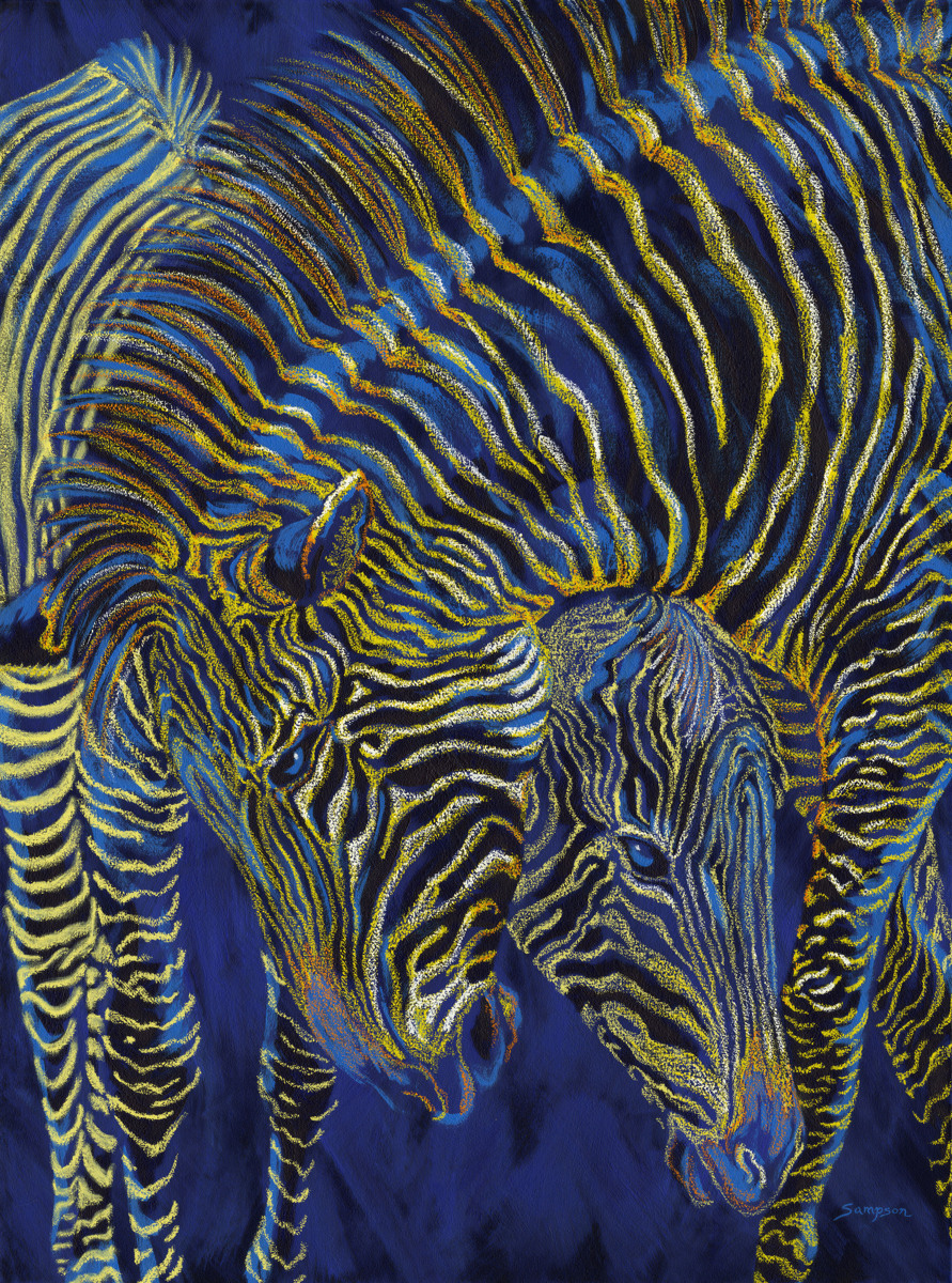 """Zebra Rumble""      (two zebras playing) (large view)"