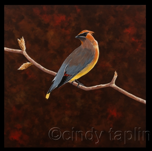 His Majesty by Cindy Taplin