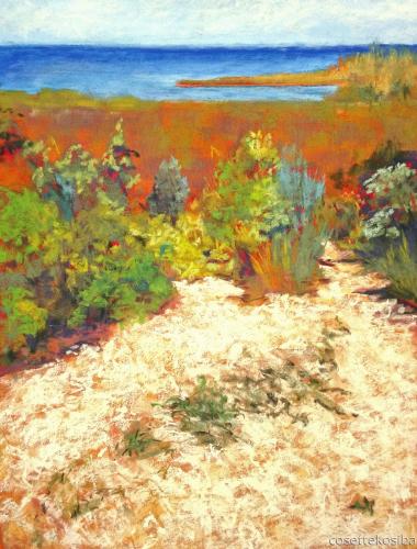 Rocky Shore by Cosette Kosiba