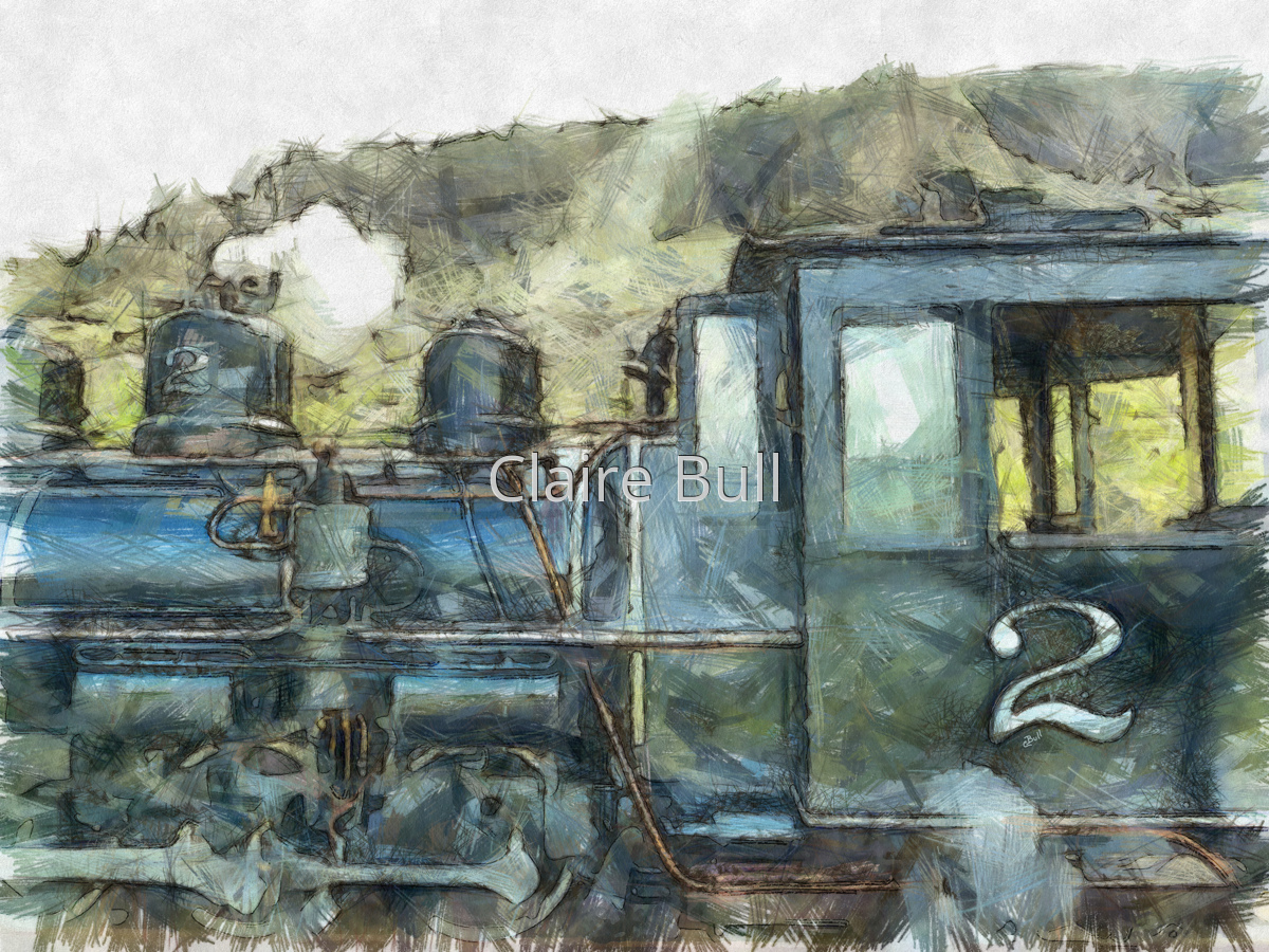 Brecon Beacon Railway Train (large view)