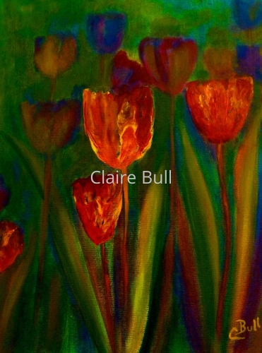 Tulip Garden by Claire Bull