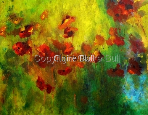 Poppies by Claire Bull