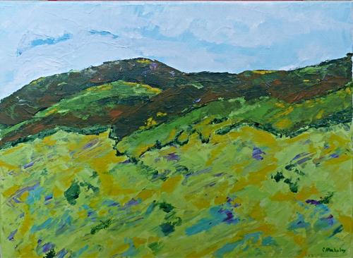 Spruce Run Mountain