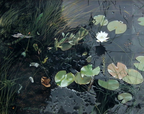 Lily Pond Revisited