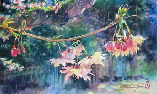 Cherry Blossom Ballerinas (large view)