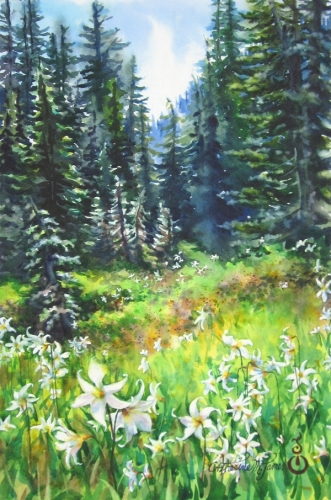 Alpine Meadow (large view)