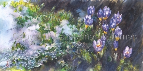 The Crocus Triumphs Over Winter: Prints by Catherine M. James