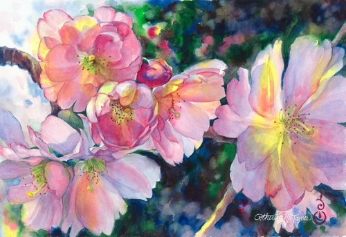 """""""Cherry Blossoms in Sunlight"""" original watercolor painting by Catherine M. James (large view)"""