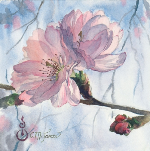Cherry Blossom Duet