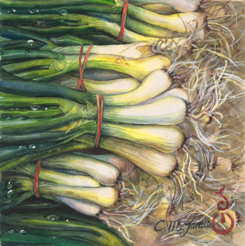Spring Onions by Catherine M. James