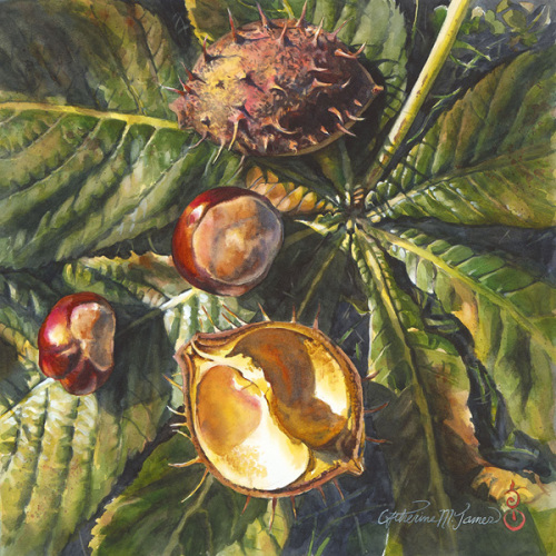 Autumn Treasures, Chestnuts (large view)