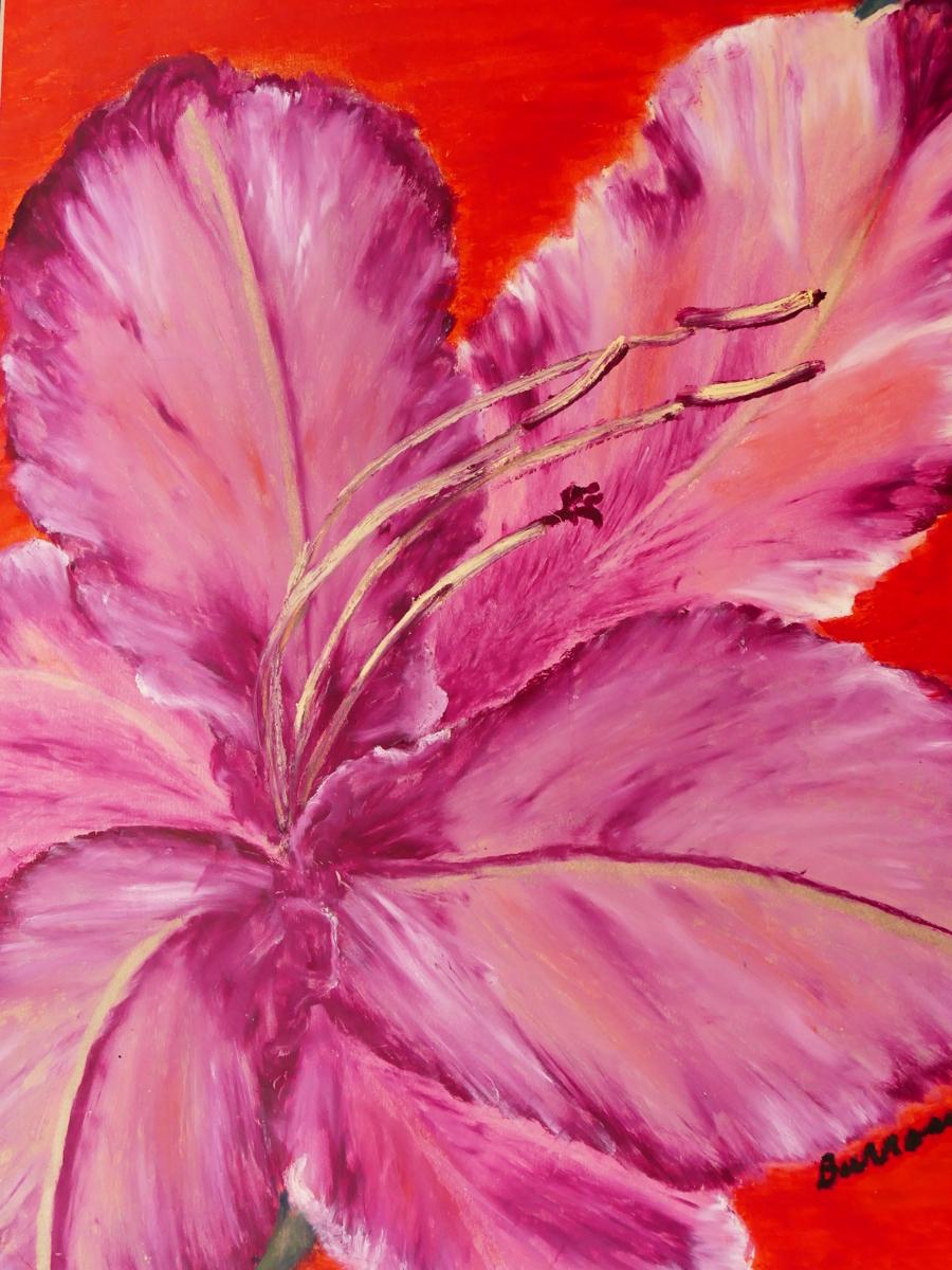 """""""Gladiolus"""" (large view)"""