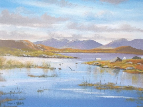 bog road roundstone by Cathal O Malley