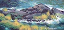Rocks and Seagrass (thumbnail)