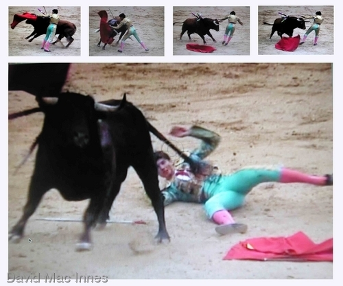Bad day at the Plaza del Toros