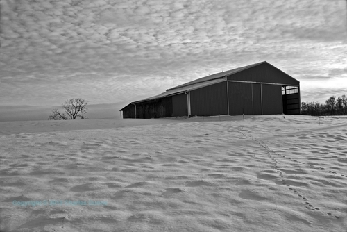 Snow Barn B&W