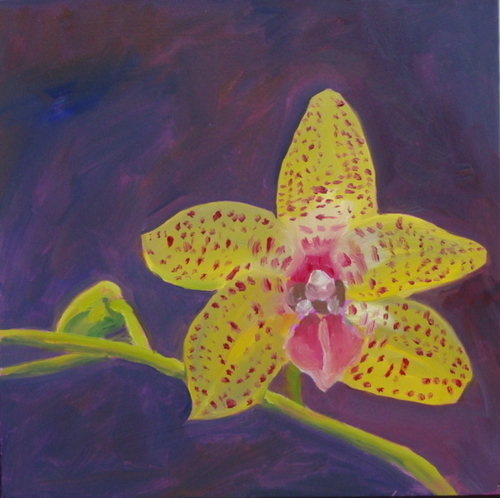 Daily Painting: Orchid