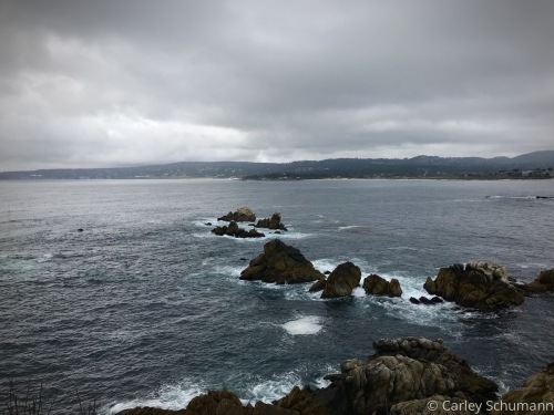 A Gray Day in the Bay