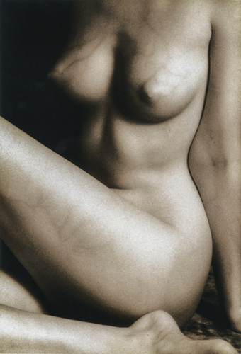 Nude Figure #1 by Craig Sheely