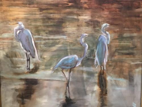 Egrets Wading