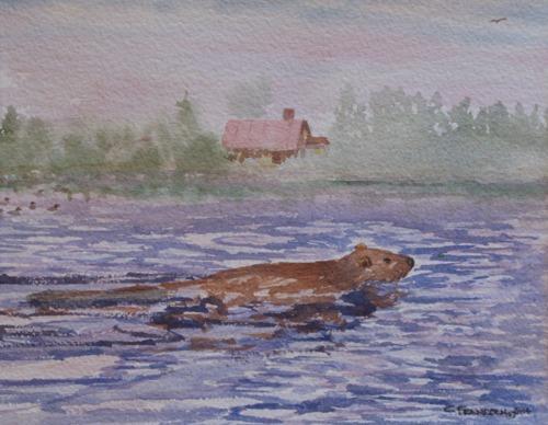 Beaver by Christopher Frandsen