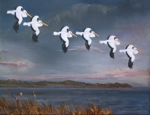 Pelican Glide