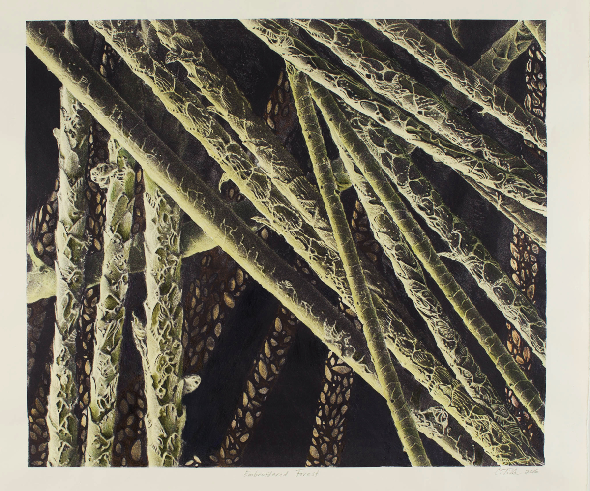 Embroidered Forest (large view)