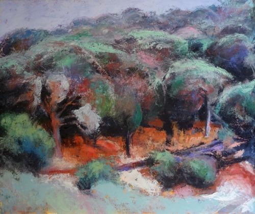 Olive Grove #2