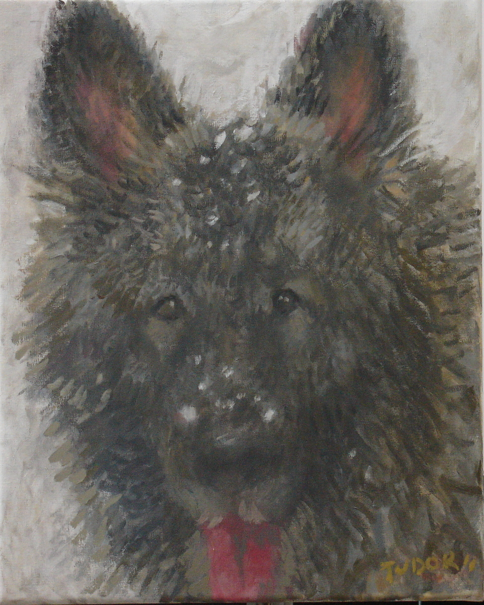 """""""ZARLEY IN THE SNOW"""" (large view)"""