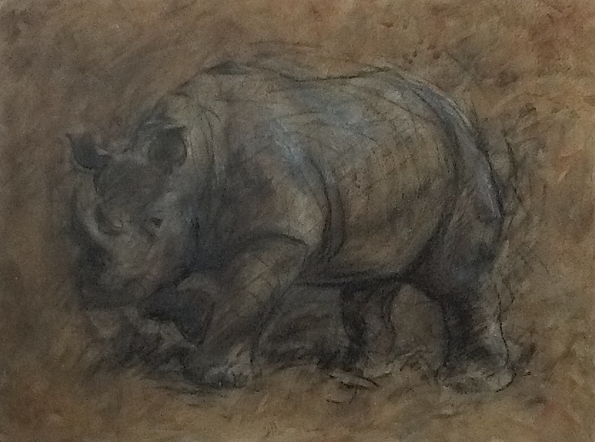 Extinct Rhinoceros Fossil (large view)