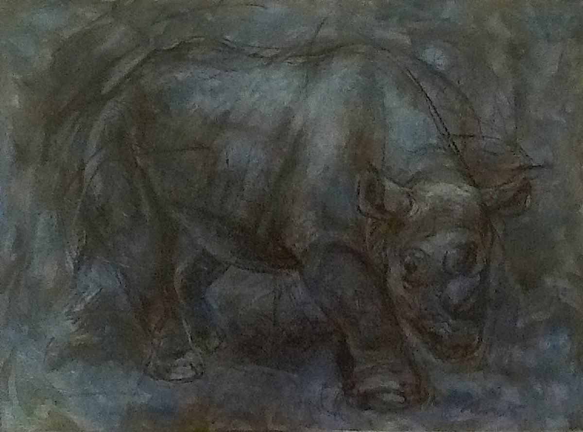Fossil : Extinct Black  Rhinoceros (large view)