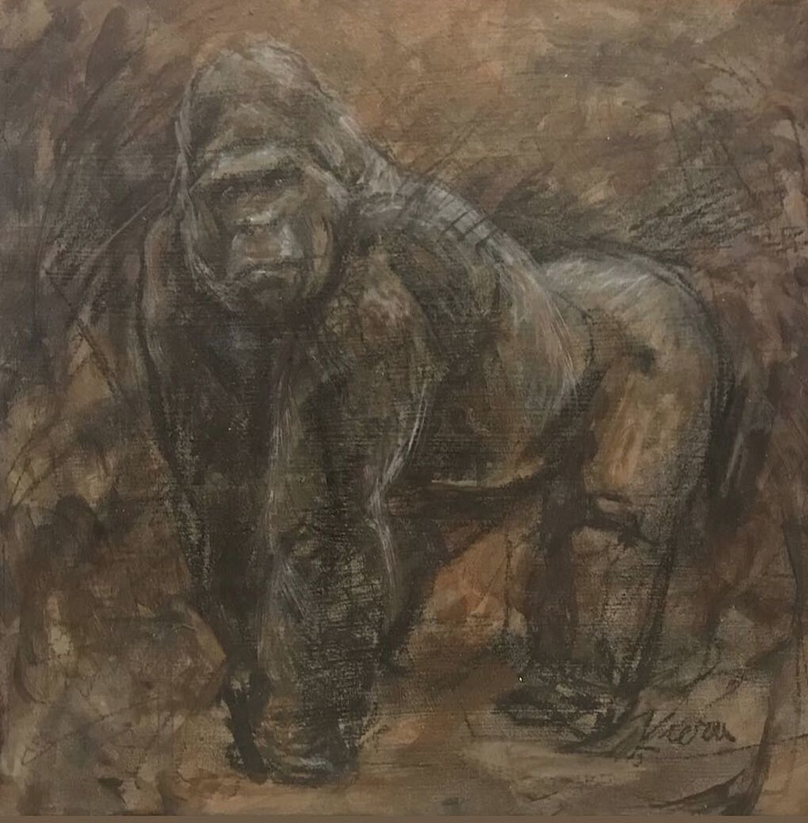 Fossil :Extinct Gorilla (large view)