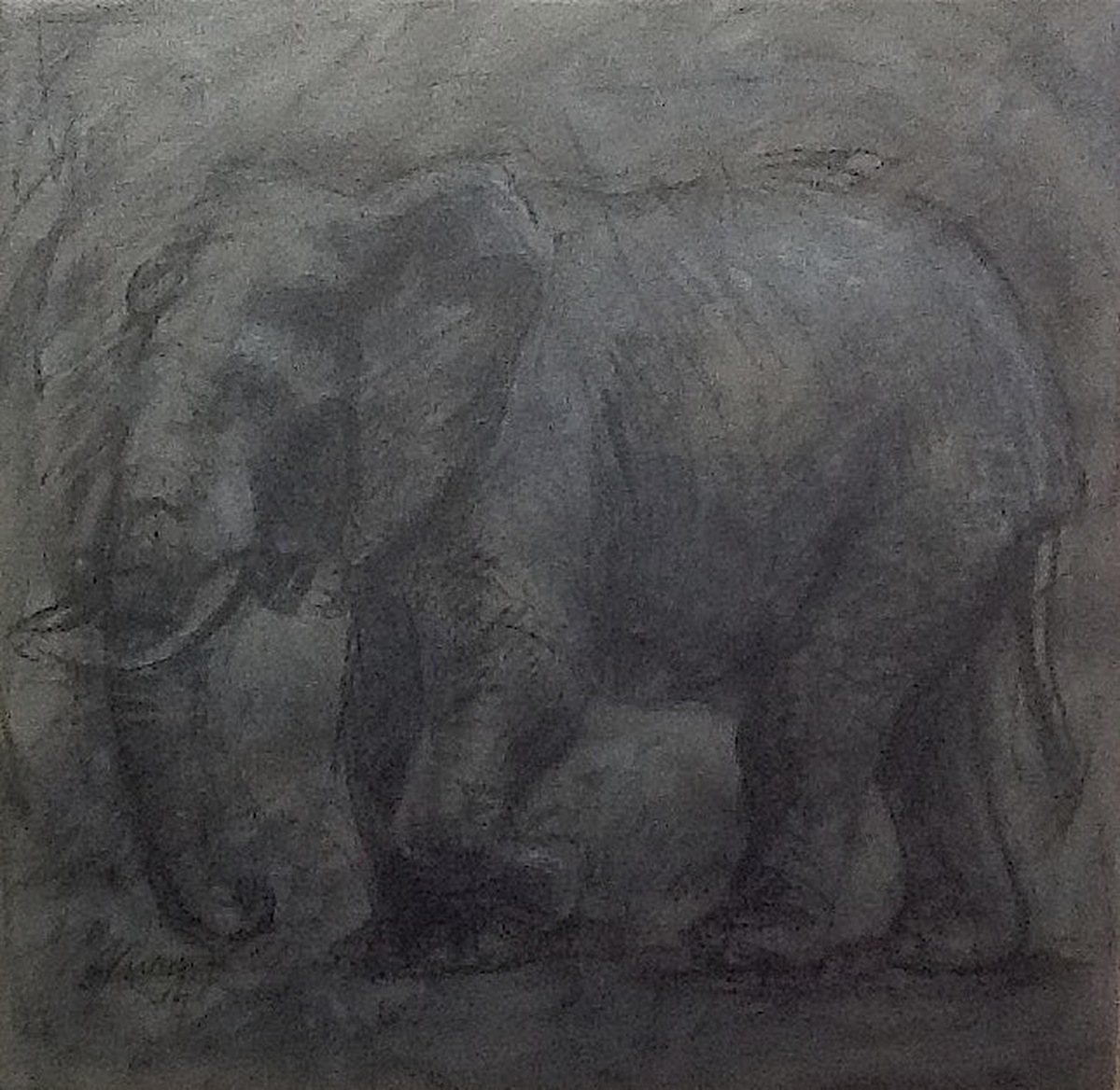 Extinct Fossil: Elephant (large view)