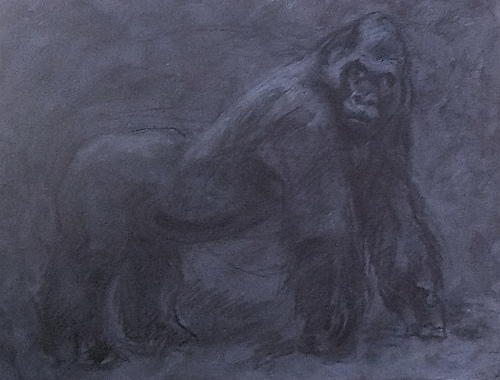 Fossi:Extinct Silver Back Gorilla (large view)