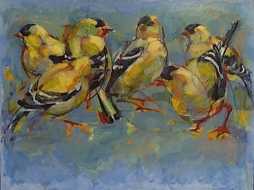 Gold Finch Gala (large view)