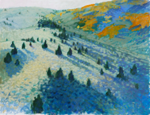 Colorado Hillside