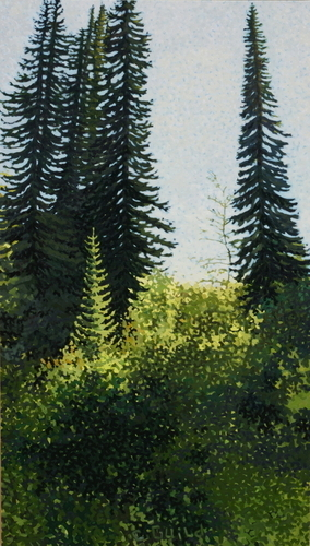 Subalpine Fir (large view)