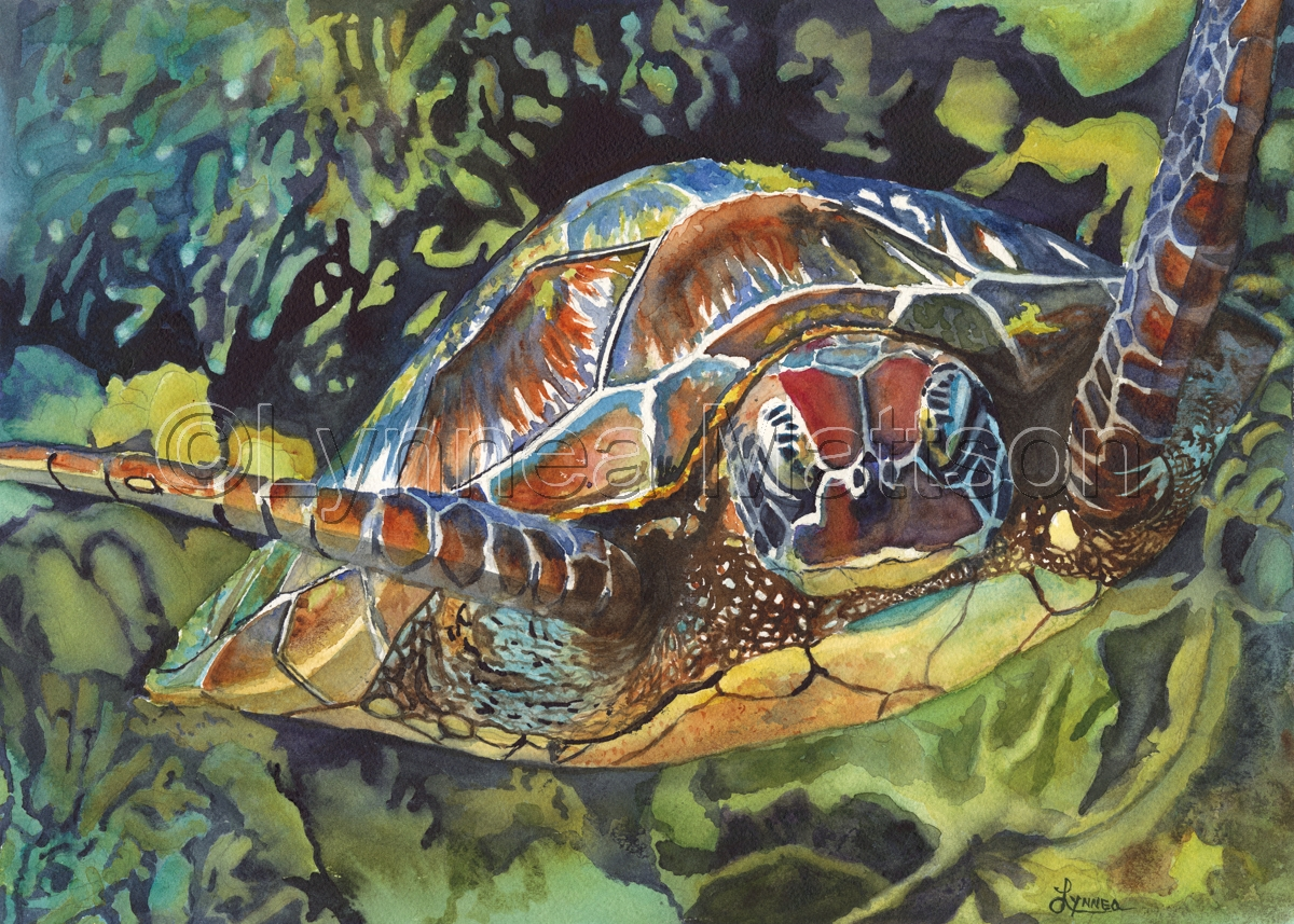 Colorful Sea Turtle (large view)