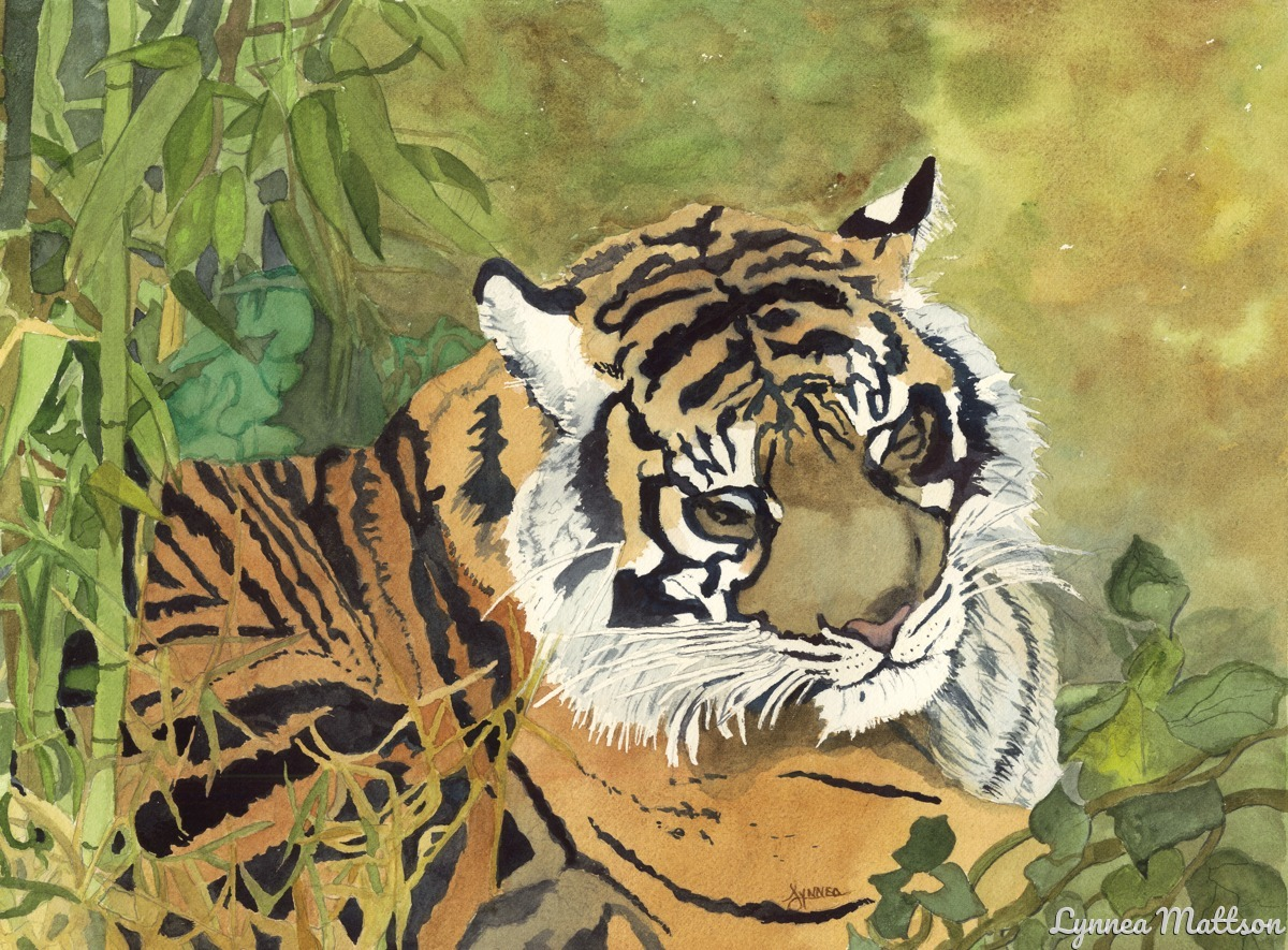 Tiger Series # 9 (large view)